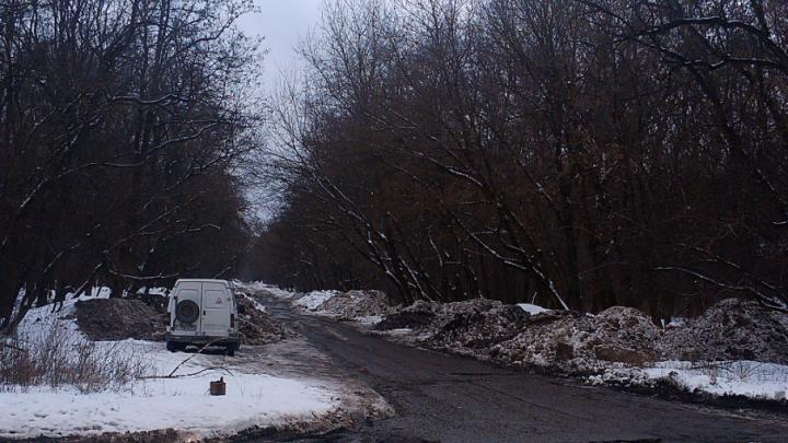 «Хватит загрязнять рощу!»: ростовчанин пожаловался на груды опасного снега, который привозят неизвестные