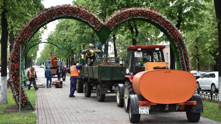 В Ярославле на арку в форме сердца ушло 6 тысяч цветов