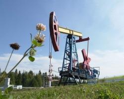 Пермские нефтяники впервые пробурили многозабойную скважину
