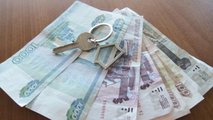 В Чайковском чиновников подозревают в незаконной продаже 150 земельных участков