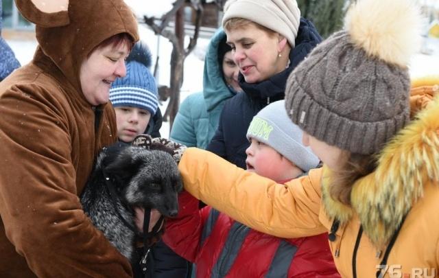 На женский праздник в Ярославле устроят бесплатную фотосессию с лисой