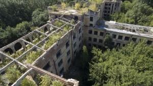 Кровли у больницы нет уже не только на прогоревших участках, а на большинстве корпусов здания: на последнем этаже вовсю растут деревья.