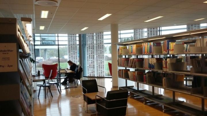 Между САФУ и норвежскими библиотеками строится библиомост