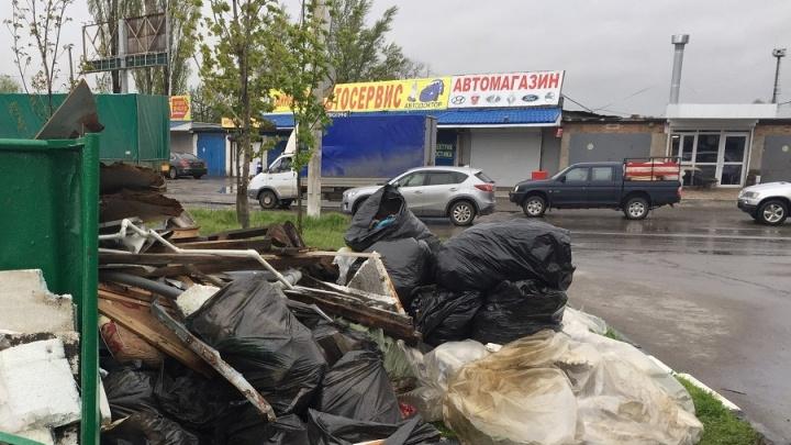 Две несанкционированные свалки обнаружили ростовские чиновники