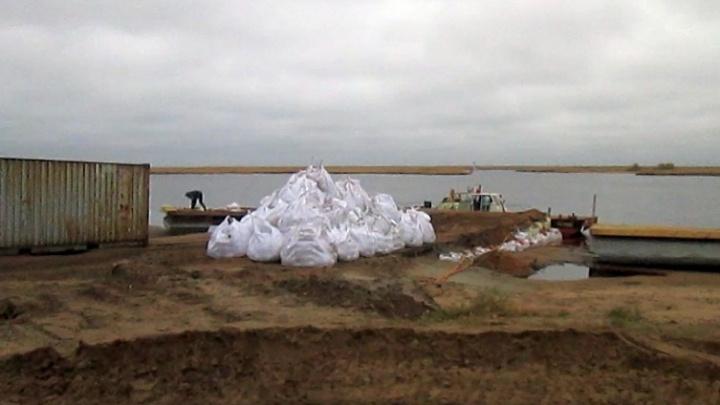 Масштабный вывоз песка в Северодвинске оказался подготовкой к строительству нового завода