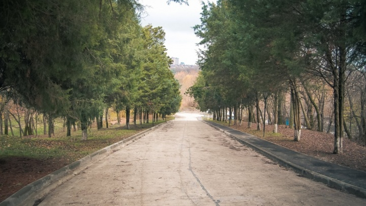 Синоптики: на выходных в Ростове ощутимо потеплеет