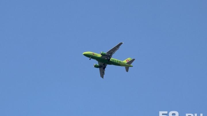 В пермском аэропорту из-за пьяного дебошира посадили самолет рейса Новосибирск–Москва