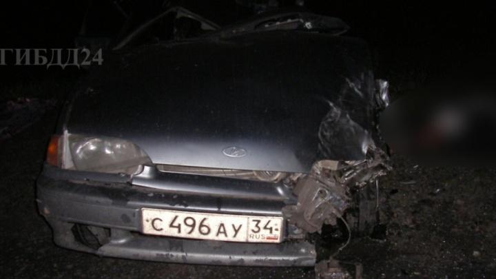 Волгоградская семья погибла из-за лося на трассе под Красноярском
