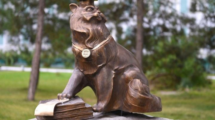 Сделанная студентами скульптура «Кот ученый» появится в Ростове