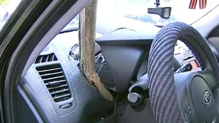 Проткнуло насквозь: в Ярославле снесённое ураганом дерево пронзило иномарку