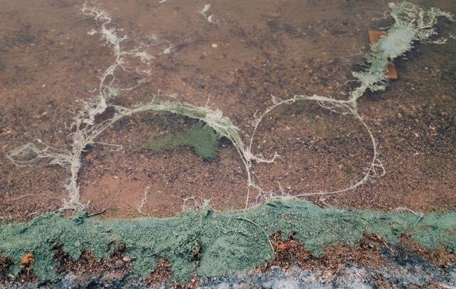 Власти назвали причиной проблем с водой в Троицке сточные воды ГОКа