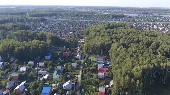 Вступился за дачников: прокурор поставил перед Дубровским вопрос о дороге через сады