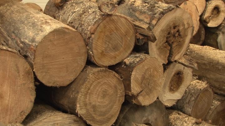 В Исакогорском округе сторожка сгорела из-за длинных дров в печи