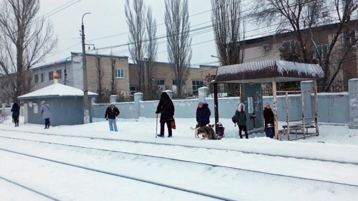 Жителей Ангарского в Волгограде оставили без остановок