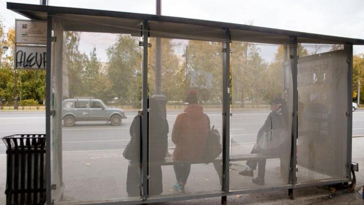 Тюменцы пожаловались в ГИБДД на пьяного водителя 64-й маршрутки