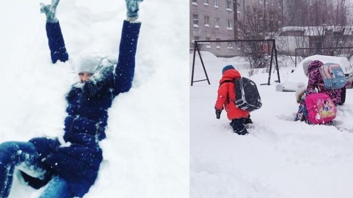 Прыжки в сугроб и дом под снегом: 10 постов об архангельской весне, которые вы должны увидеть