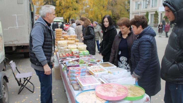 В Самарской области ярмарки будут проходить в дизайнерских павильонах
