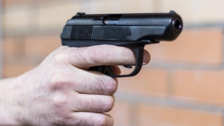 В роще на окраине Ростова полиция нашла арсенал с оружием