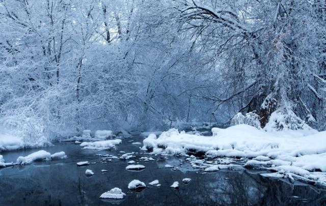 К 8 Марта в Поморье вернется весенняя оттепель