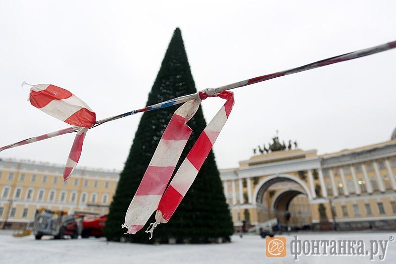 Главная ель Петербурга на Дворцовой площади - 13,5 миллиона