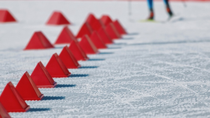 Тюменские паралимпийцы завоевали на Кубке мира 14 медалей