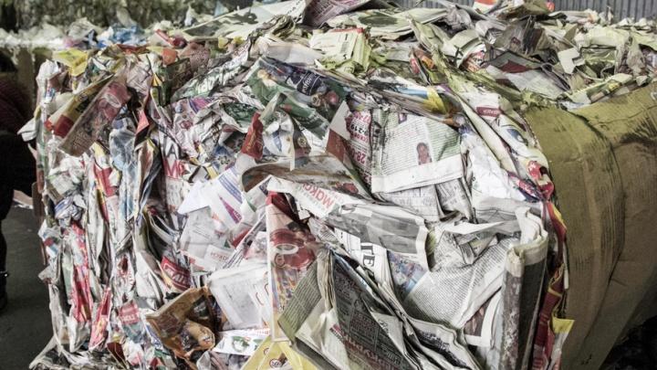 Что написано пером: архангельские журналисты замолвили слово о свободе