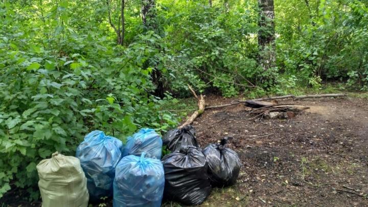 Игра в сборщиков мусора: пермякам предлагают принять участие в экологическом квесте