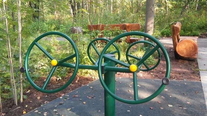Рули, велосипед и вертикальная тяга: в Черняевском лесу появился «спортзал» для инвалидов-колясочников