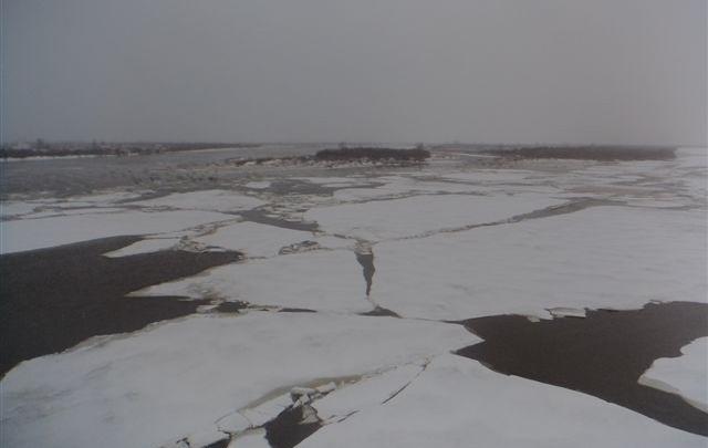 Северодвинские спасатели сняли мальчика с отколовшейся льдины