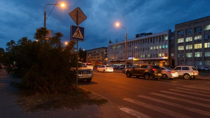 Коммунальщики Волгограда оперативно срезали «кусты-убийцы»