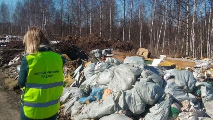 За московские «мусорные» деньги в Ярославской области ликвидируют нелегальные свалки