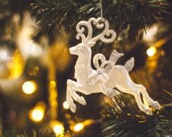 Сеть ресторанов «Вкус 72» приглашает отметить Новый год с размахом