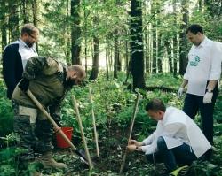 Сбербанк обновил лесопосадку на охраняемом ландшафте «Липовая гора»