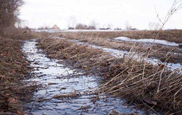 Инвесторам отдадут ярославские земли без торгов