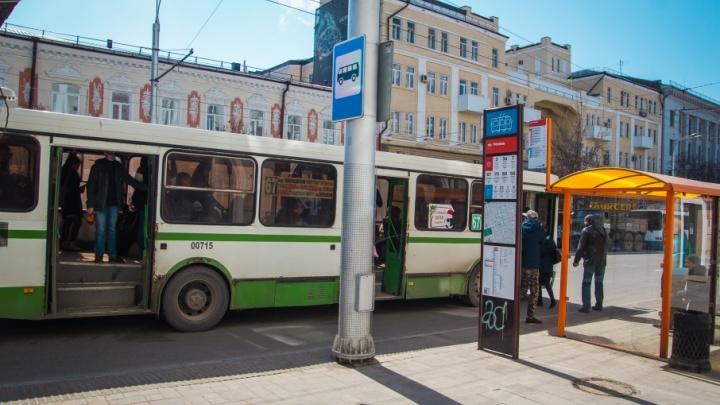 Во время ЧМ-2018 в Ростове бесплатные шаттлы будут возить болельщиков по восьми маршрутам