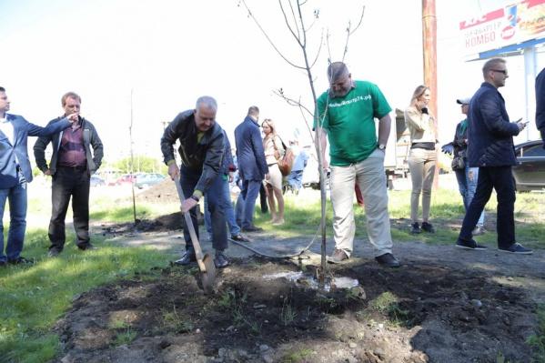 Активисты посадили на площади Павших 21 дерево