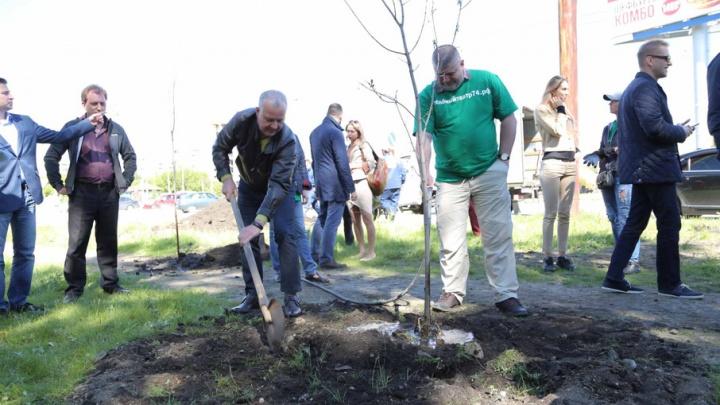 Добавили зелени: известные челябинцы посадили деревья на площади Павших революционеров