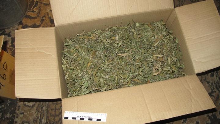За сутки южноуральские полицейские поймали троих дилеров с 1,5 кг травки