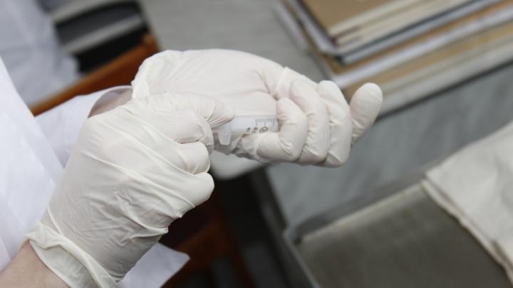 От укусов клещей с начала сезона пострадали более 30 тыс. россиян