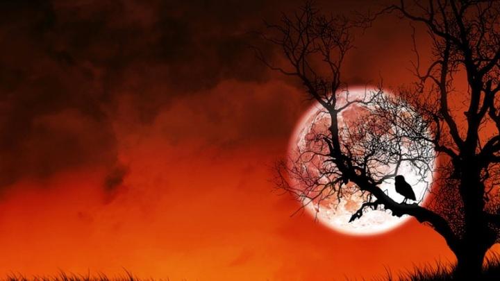 Кровавую луну в Архангельске увидеть будет непросто из-за облаков
