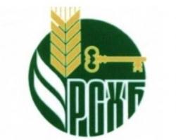 За 14 лет Россельхозбанк вложил 150 млрд рублей в экономику Дона