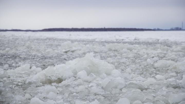 Второй шанс судам из Татарстана архангельские чиновники дадут весной