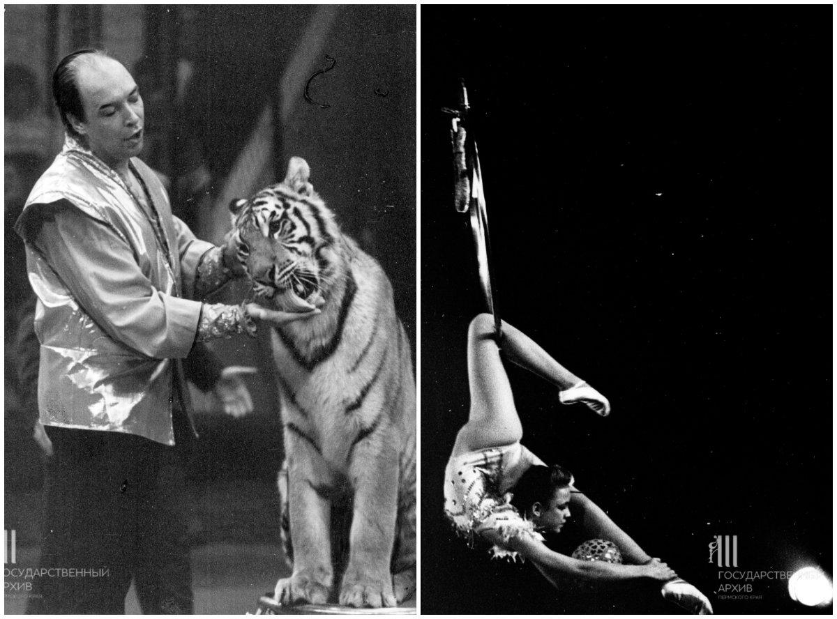 Слева – дрессировщик Константиновский с уссурийским тигром на манеже цирка, 1992 год. Справа – выступление артистов городского детского цирка, 1994 год
