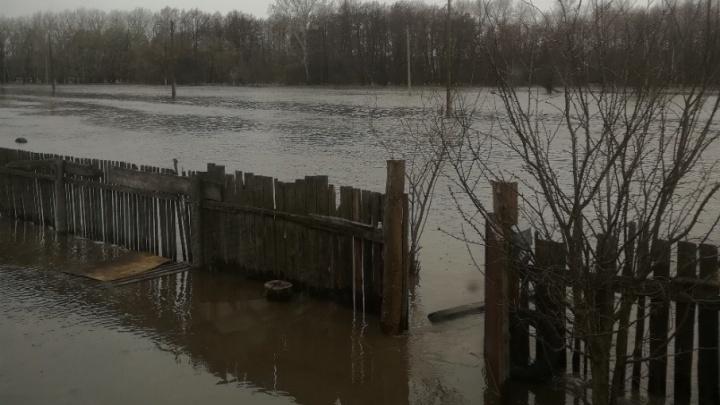 В Кумылженском районе ввели режим чрезвычайной ситуации из-за паводка