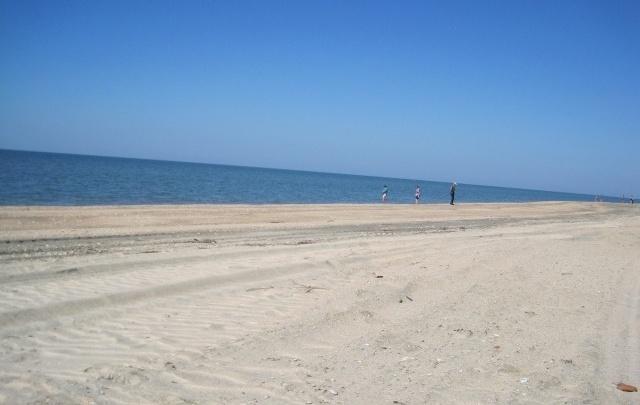 Открыть пляжный сезон в Самаре планируют 15 июня