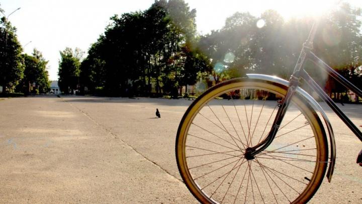 Ярославцы устроят заезд на велосипедах до свалки