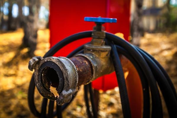 Во время первого в этом году лугового пожара выгорели камышовые заросли
