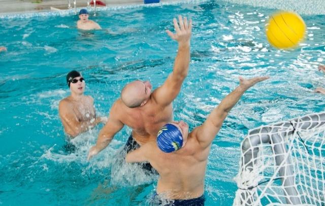 Архангельская область признана одной из самых спортивных в СЗФО