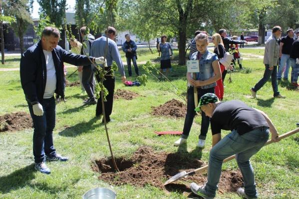 Конкурс проектов по озеленению и благоустройству городов продолжается