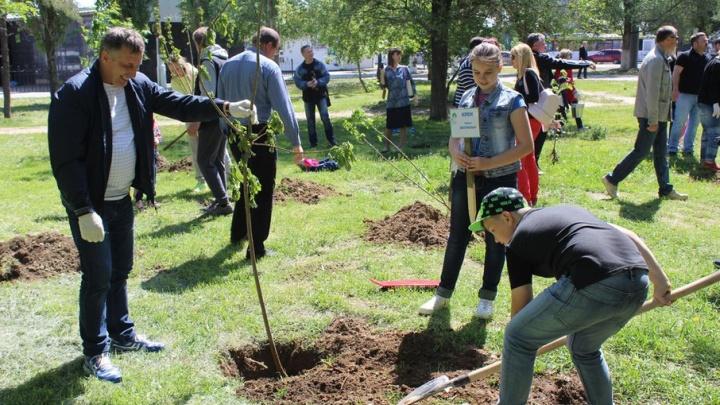 РУСАЛ запускает второй этап грантового конкурса «Зеленая волна» в Волгограде
